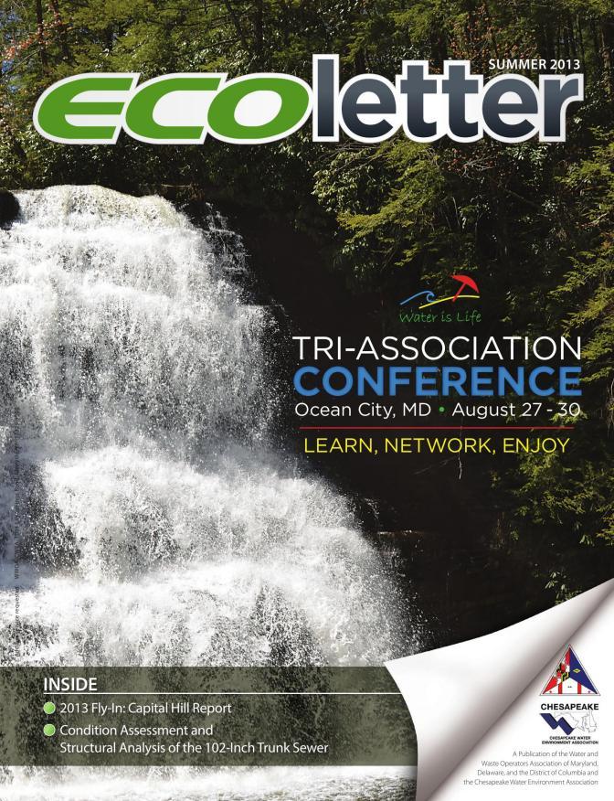 Ecoletter Summer 2013